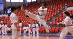 20090317063304-campionatul-national-de-karate-kata-363603945