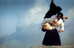 aikido-form