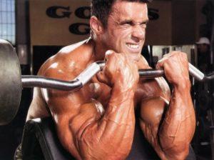 bigger-biceps
