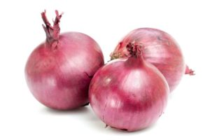 onion_1