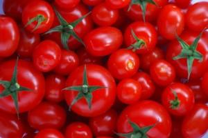 Flash-lit_macro_Tomatoes