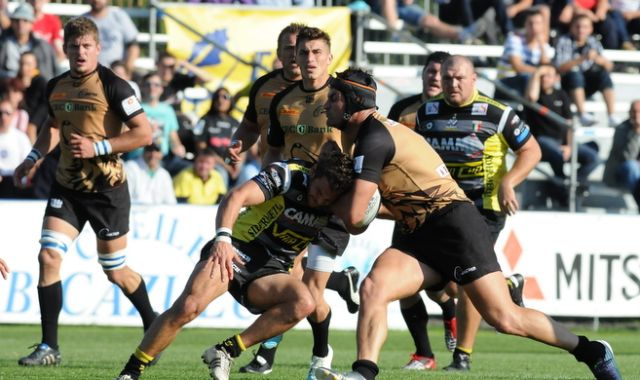 """Lupii"" Bucuresti va infrunta pe Newcastle Falcons in AMLIN Challenge Cup!"