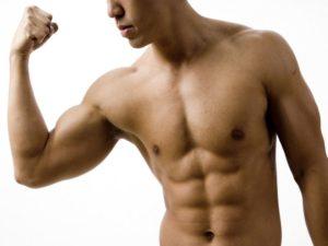 masa musculara1