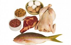 protein5