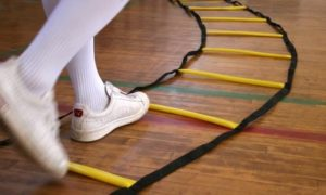 physical-agility-ladder-indoor-15-ft-with-bag-product-large-4208